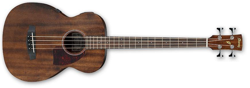 best acoustic bass guitar ibanez