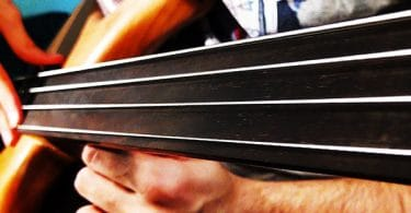 fretless cover